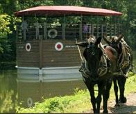 Josiah White II Canal Boat Ride