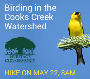 Join us on May 22nd for a lovely morning hike while searching for the amazing birds that call the Fuller/Pursell Nature Preserve home. Learn from expert birder Diane Allison as we explore the Cooks Creek Watershed on an almost 2-mile hike through the forest to learn about our feathered friends. No prior birding experience necessary, but please bring a set of binoculars and be ready to hike on varied hilly terrain.