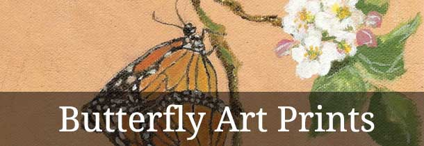 'butterfly stories, butterfly quotes, butterfly releases' from the web at 'http://buckscountyalive.com/abnrs/images/velmabegley.jpg'