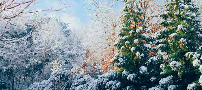 Winter is a wonderful time to enjoy shopping, dining, and the wonderful sights in Bucks County, PA