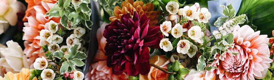 Florists, Floral Arrangements, Bouquets in the Bucks County, PA area
