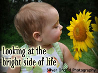 Looking at the Bright Side of Life with BucksCountyAlive.com
