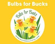 Bulbs for Bucks