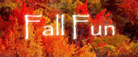 Fall Festivals & Fall Fun