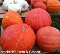 Froehlich's Farm & Garden in Furlong, PA