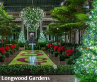 Local holiday attractions, Longwood Gardens