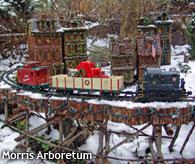 Local holiday attractions, Morris Arboretum
