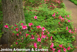 Gardens and Arboretums