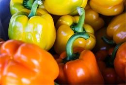 Donate extra veggies to food pantries